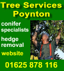 tree surgeon - click here